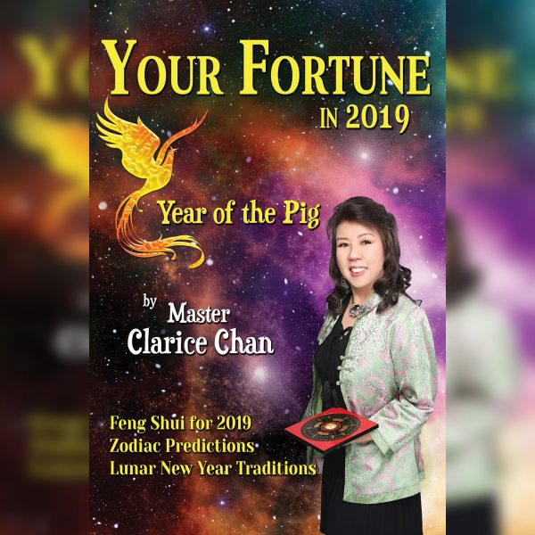 your-fortune-in-2019-cover