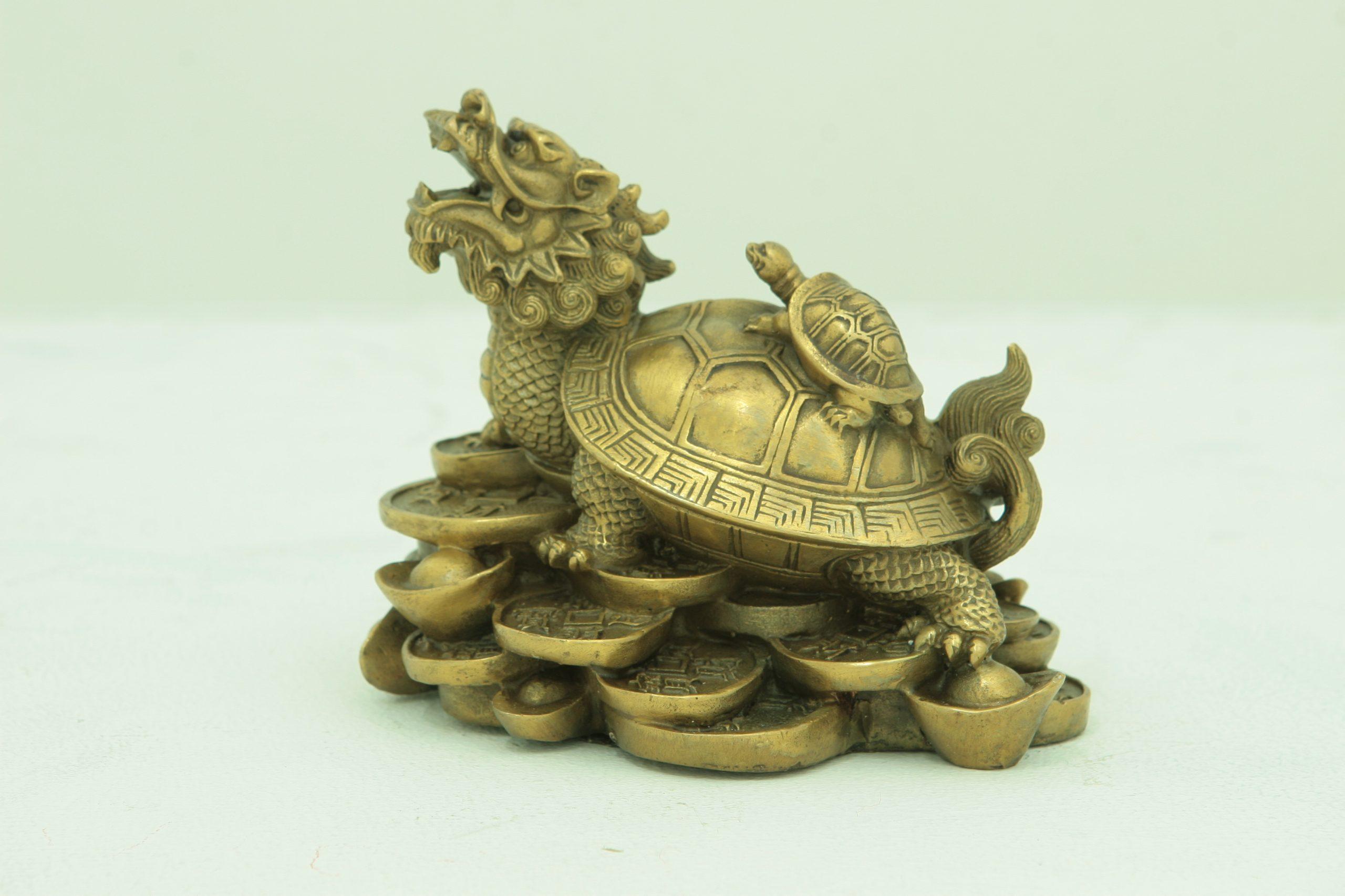 Dragon Head Tortoise